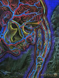 """""""If you desire healing, let yourself fall ill let yourself fall ill."""" Mawlānā Jalālad-Dīn Rumi Art: By Alex Grey Alex Grey Paintings, Alex Gray Art, Grey Artist, A Perfect Circle, Process Art, Visionary Art, Rave Outfits, Psychedelic Art, American Artists"""