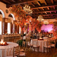 uplit trees to create indoor forest and decorated the tables with leaves and candles for a romantic look.