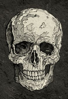 Skull by Tota Milow, via Behance