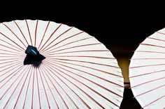 white parasol  japan