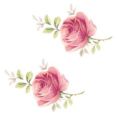 These are WATERSLIDE DECALS and so easy to use. We have a HUGE selection of waterslide decals to enhance any decor. Rose Clipart, Flower Clipart, Vintage Rosen, Rosen Tattoos, Illustration Blume, Decoupage Vintage, Rose Cottage, Flower Backgrounds, Rose Design