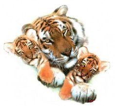 Tiger Print Tattoo | Lion Tat With Cub || Tattoo from Itattooz