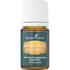 Northern Lights Black Spruce - 5ml | Young Living Essential Oils