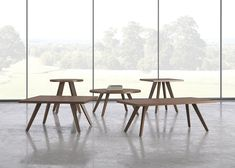 #DailyProductPick Te