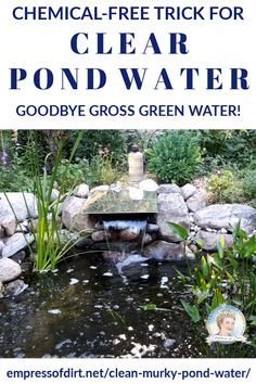 , If you have green, murky pond water, this method may be just what you need to clear your water without chemicals. And it often works within hours. , How to Clear Murky Pond Water Fast Without Chemicals Natural Swimming Ponds, Natural Pond, Fish Pond Gardens, Small Gardens, Modern Gardens, Tropical Gardens, Outdoor Ponds, Outdoor Fountains, Garden Fountains