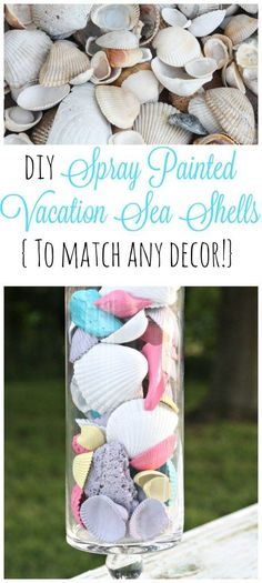 This is an incredibly simple and fun DIY project! Just take your sea shells that you find on vacation and spray paint them ANY color to match your home decor! These look so cute in my daughter's room!