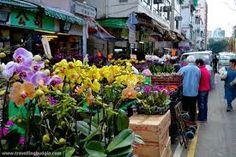 Flower Shop Flowers,  http://economicnewsarticles.org/1046761/  Flower Shops Near Me,Flower Shop,Flower Shop Near Me,Flower Shops,Flowers Near Me