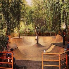scramblerducati:  Best skatepark ever. ( source : Mahoney Skateboard )
