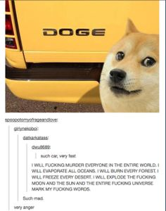 Makes me laugh every time I see Doge memes.