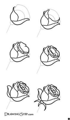 Flower drawing tutorial step by step – Learn to draw a beautiful flower Flower Drawing Tutorial Step By Step, Flower Drawing Tutorials, Painting Tutorials, Simple Flower Drawing, Flower Art, Drawing Flowers, Paint Flowers, Flower Drawings, Pencil Drawings