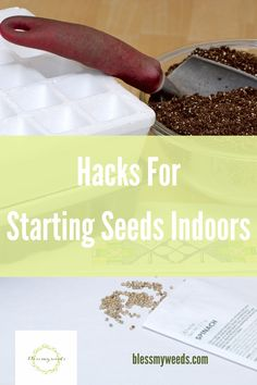 There is no reason to not start your seeds indoors once you know these hacks. What are you waiting for? Read the post to learn how easy it is and why this will help you have the best growing season ever. Starting Vegetable Seeds, Starting Seeds Indoors, Seed Starting, Germinating Seeds Indoors, Planting Seeds Quotes, When To Plant Seeds, Healthy Seeds, Seed Catalogs, Growing Seeds