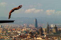 Les 40 plus belles photos de sport de 2013