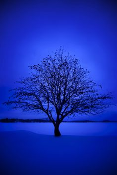 Blue Aesthetic Discover Blue Winter Winter in Finland