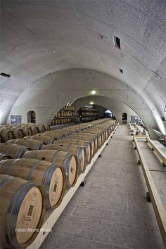 Quinta do Vallado Winery - taninotanino vinos inteligentes cellar mxm