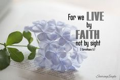 Scripture Quotes, Bible Scriptures, Faith Quotes, Christian Love, You Better Work, Walk By Faith, Verse Of The Day, Daily Bread, Word Of God