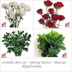 Bulk Flower Combo Box Spray Roses - Hypericum - Ruscus – Eblooms Farm Direct Inc. Lavender Flowers, All Flowers, Bridal Flowers, Fresh Flowers, Bridal Bouquets, Delphinium, Hydrangea, Bulk Flowers Online, Spray Roses
