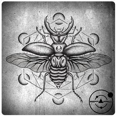 Beetle by sparc666