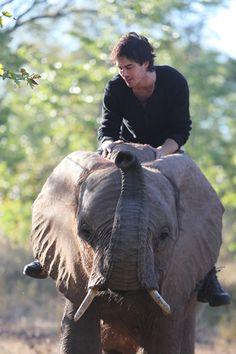 Ian and an elephant! Oh my!
