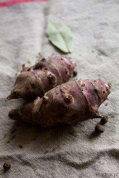 topinambour jerusalem artichoke