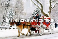Ride in a horse and carriage
