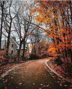 🍂 Cozy Autumn 🍂 — cozyautumnpumpkin: ~Grab a blanket and come get. aesthetic 🍂 Cozy Autumn 🍂 - cozyautumnpumpkin: ~Grab a blanket and come get. Autumn Aesthetic, Cozy Aesthetic, Autumn Cozy, Fall Winter, Autumn Rain, Autumn Photography, Life Photography, All Nature, Autumn Nature