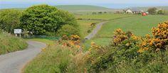 08 sea view, Ruth's coastal walk, Galloway, Scotland