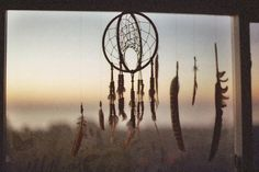 I don't know what it is about feathers and dream catchers...but I love them.