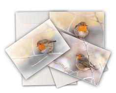 """3 cartes doubles photos  """"rouge gorge"""" de colores de la naturaleza sur DaWanda.com"""