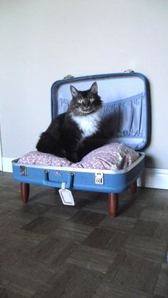 Luvable Luggage Pet Bed - Pink, Blue, Shabby Chic - 2 dollars goes to carescatshelter