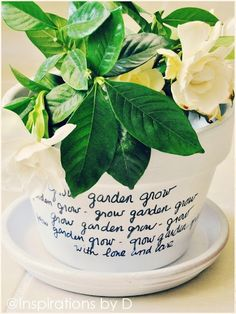 """DIY Message Flower Pot. Tutorial from Inspirations by D here.I posted something like this as inspiration (it was $30) that I saw on Swissmiss - """"I Will Survive"""" was written on the pot here (I never forget a post).   I suggested that someone should write the lyrics on the pot with Stevie Wonder's lyrics from """"Secret Lives of Plants"""" (Youtube here):    I can't conceive the nucleus of allBegins inside a tiny seedAnd what we think as insignificantProvides the purest air we breathe"""
