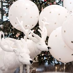 Dreaming under the stars ... a white Christmas party with Chocolat Show 🌟#chocolatshowevents #christmasparty #balloons #whitereindeer