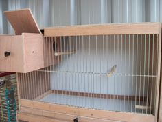 how to make a cockatiel breeding cage