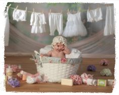 The Childrens Garden Photography Studio - sprouts (babies)