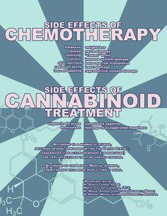 Chemo vs Cannabis