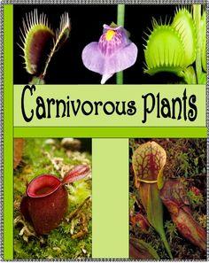 Dynamic 2 Moms - Carnivorous Plants FREE Lapbook/Notebooking Unit