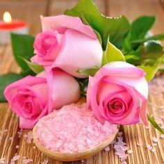 Adarl 100 pcs/Bag Pink Rare Rose Flower DIY Plants Home Garden Rare Pink Roses Seeds * Find out more details by clicking the image : home diy yard