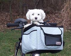 bicycle accessories baskets | silver buddy basket dog bicycle carrier the buddy pet bicycle basket ...
