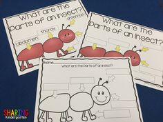 pocket chart activities: parts of insect, non insect vs insects, where they live, etc... bought it