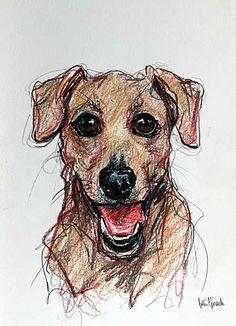 Pittsburgh Based Artist - Pet Portrait Sketches