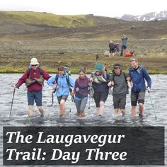 Laugavegur Trail Day Three: Alftavatn to Emstrur - I Am a Polar Bear Everything I Own, Polar Bear, Wake Up, Iceland, Trail, Adventure, Coffee, Day, Kitchen