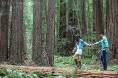 Muir Woods Engagement Shoot by Stacey Pentland Photography