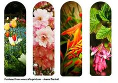 Floral Bookmarks  Photography on Craftsuprint - View Now!