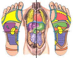 Reflexology Training Chart #Health