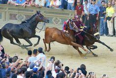 裸馬が疾走、イタリア伝統競馬「パリオ」 写真15枚 国際ニュース : AFPBB News