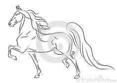 American Saddlebred Horse Royalty Free Stock Photo - Image: 33018455