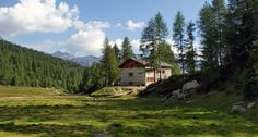 RIFUGIO MITTA - Sorge a 2021 m. affiancato al rifugio Musella, su un affioramento roccioso fra larici e abeti, al margine occidentale della conca dell'Alpe Musella. Sono una delle mete escursionistiche più frequentate della Val Malenco.