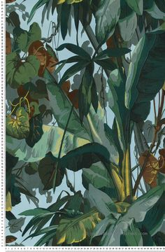 Jungle by Albany - Green - Wallpaper : Wallpaper Direct 2017 Wallpaper, Green Wallpaper, Rain Illustration, Botanical Illustration, Tropical Art, Botanical Prints, Wall Murals, Abstract, Tropical Flowers