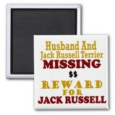 Jack Russell Terrier & Husband Missing