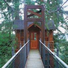 Such awesome tree houses!!!  I need to live in one of these :)