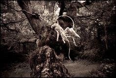 Wonderland- Far, far away, part 2 - Kirsty Mitchell Photography